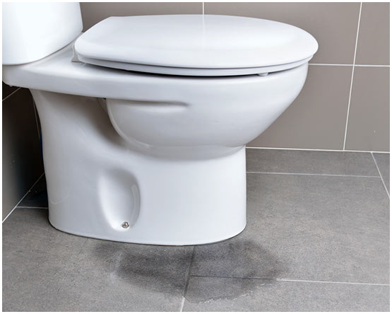 Toilet Leaking in Cookridge